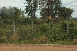 Land for sale in Dongbang, Vientiane