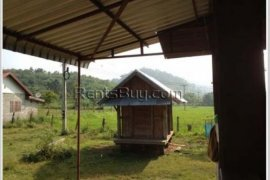 Land for sale in Sangthong, Vientiane