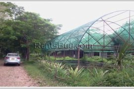 Warehouse / factory for rent in Xaythany, Vientiane