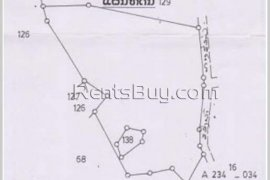 Land for sale in Phonhong, Vientiane