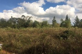 Land for sale in Champasak